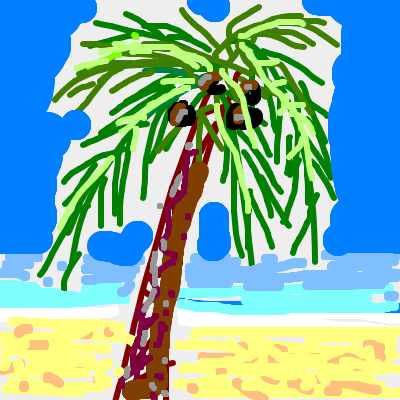 coconut tropical tree beach